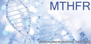 MTHFR-Gene-mutations-folate-folic-acid